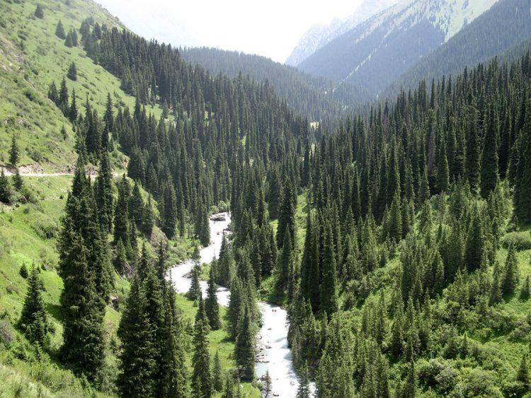 National Park- 2- globuslanding.com