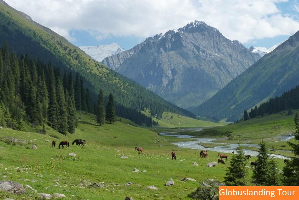 IMG-Altyn-Arashan