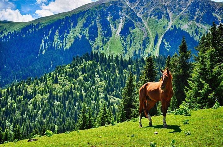 Kyrgyzstan-landscape