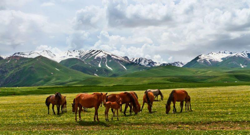 Suusamir Valley