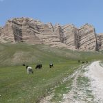 travel kyrgyzstan with local tour guides